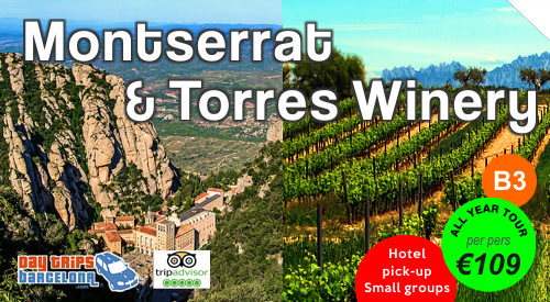 Day Tour Montserrat & Torres Winery
