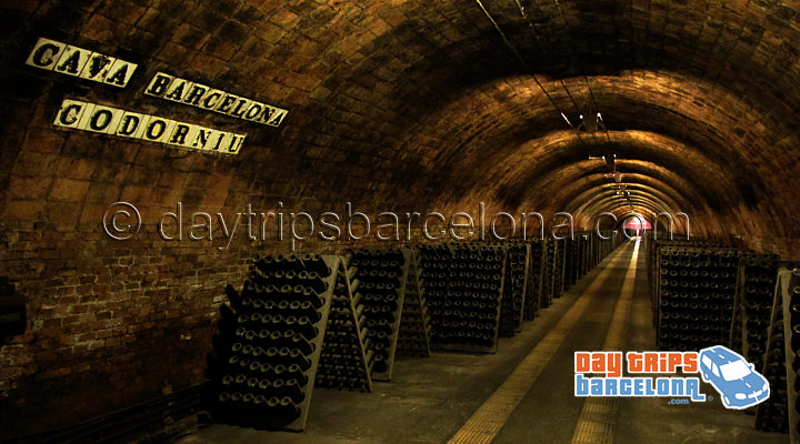 Barcelona Wine and Cava Day Tour